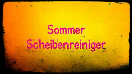 Sommer Scheibenreiniger
